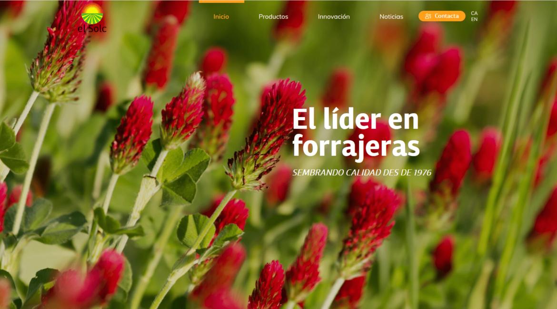Nueva Web El Solc